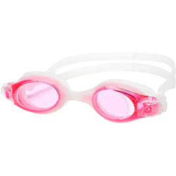 Leader Goggles