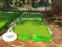 Azolla Bed 12x4x1 GSM 450 Green And White