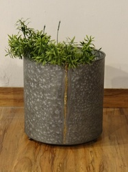 Galvanised Brass Welded Indoor- Outdoor Vertical Planter