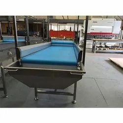 Vegetable Transfer Conveyor