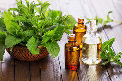 Pure Natural Aromatherapy Oil