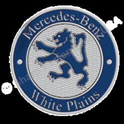 Color Filled Metal Badge
