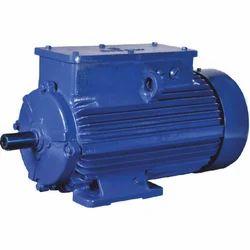 230V Electric Motor