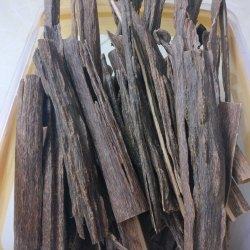 Agarwood Golaghat,SBAW9027