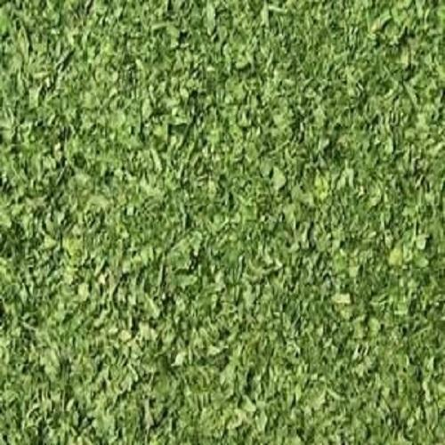 Dry Leaves - Wholesale Price & Mandi Rate for Dry Leaves