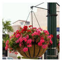 Garden Round Hanging Basket With Coco Coir Liner2