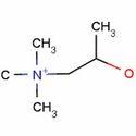 Acetyl Beta Methylcholine Bromide