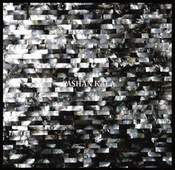 Black Lip Mother of Pearl Mosaic Tiles