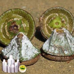 Eucalyptus Globulus Oil Certified Organic