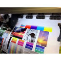 Board Printing Services