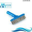 9 Inch Algae Brush
