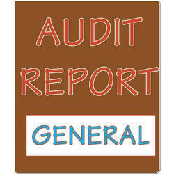 Annual Environmental Audit Report Services