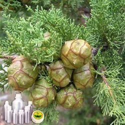 Cypress Oils
