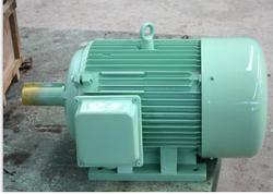 1KW 200 RPM Permanent Magnet Generators