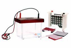 Rapid Mini Dual Wet Blot Apparatus