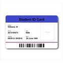 Corporate Identity Cards