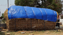 Arjun Armour Fodder Covers