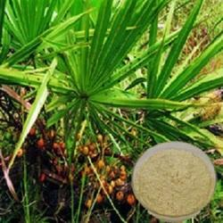 Saw Palmetto Extract 25%