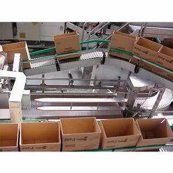 Carton Transfer Conveyor