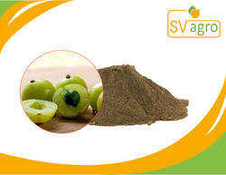Amla Extract (Emblica Officinalis)