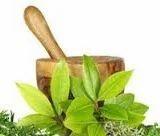 Herbal Pharma PCD Franchise