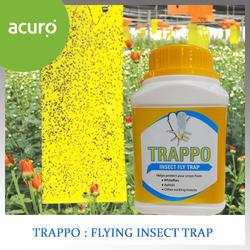 TRAPPO  Flying Insect Trap