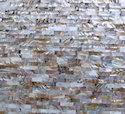 China River Shell Dev Gemstone Slab