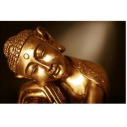 Buddha Bronze Acrylic Paintings