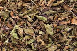 Shyama / Krishana Tulsi Leaves (Dried)