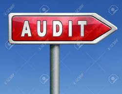 Annual VAT Audit Services