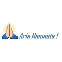 Aria Namaste- Live Chat Service- Advanced