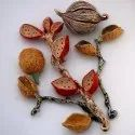 Agricultural Seeds Testing Services