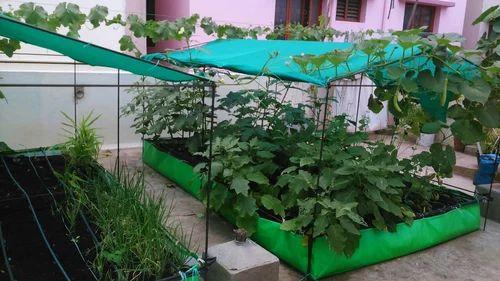 Rooftop Farming Grow Bag Organic