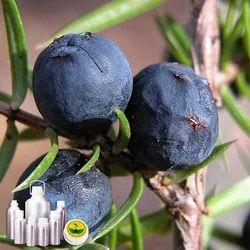 Organic Juniperberry Oil