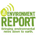 Environmental Project Report Services