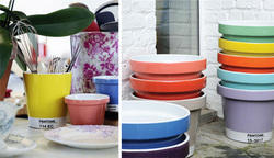 Colour Pots
