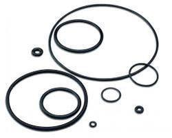 Elastomer O Rings