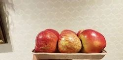 Fresh Fruit Packaging Paper Pulp Tray 6pc