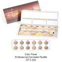 Concealer Palette Powder