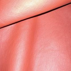 Leather Wash Dull