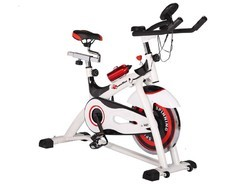 Powermax Group Spinning Bike (Bs155)