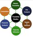 Marketing Feasibility Survey