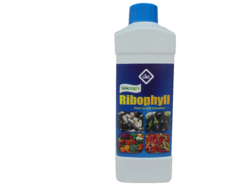 Ribophyll (Plant Growth Promoter)
