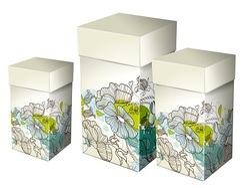 Duplex Printed Box