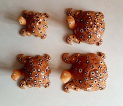 Wooden Star Tortoise Set