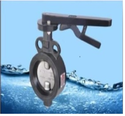Butterfly Valve - CI - Lever Operated