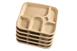 5 Cp Sq. Biodegradable Plate
