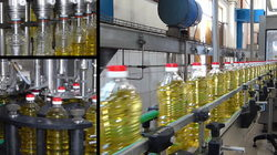Oil Filling Capping Machine