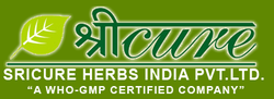 Herbal PCD Franchise in Balrampur