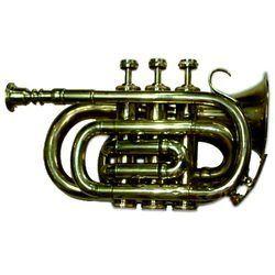 Band Horn
